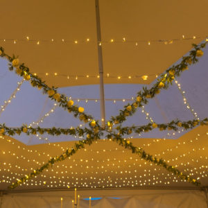 Marquee lighting Devon
